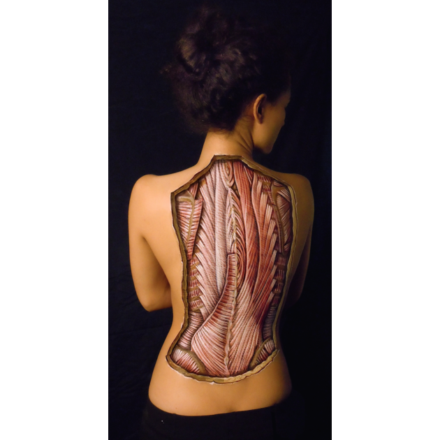 womans anatomical back