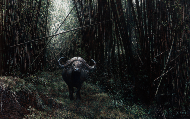 'The Misanthrope' - 48 x 30 - Oil on canvas - cape buffalo in bamboo forest