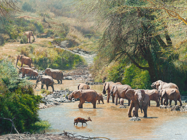'Ancestral Oasis' - 48 x 36 - Oil on canvas - Elephants in river